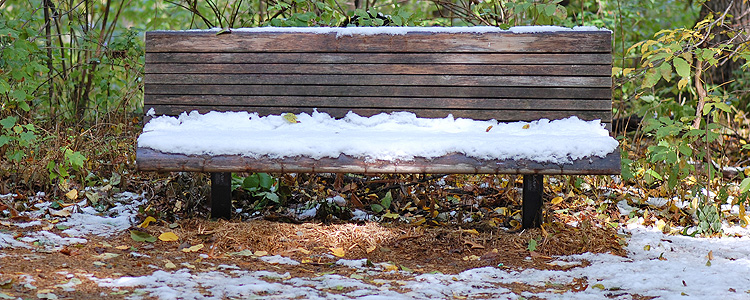 Bench with early snow