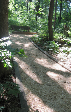 Paths repaired after storm