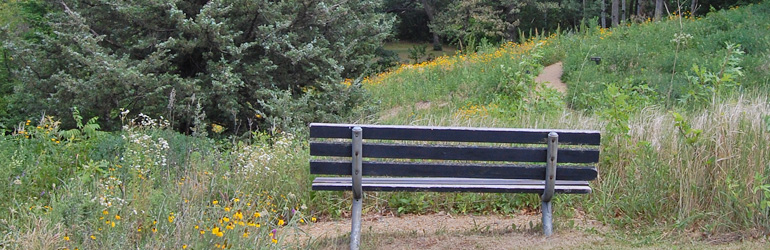 Bench in Upland