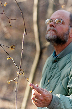 Cary George with Witch Hazel