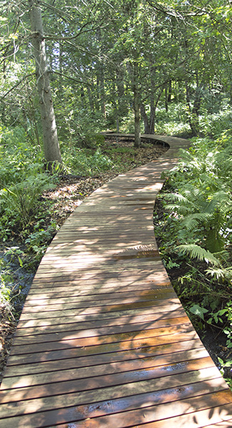 Boardwalk Segment