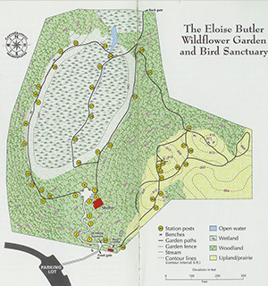 The Geography Of The Eloise Butler Wildflower Garden