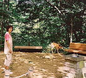 Connie with deer in the Garden
